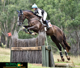 Soaring over the Sydney Eventing Summer Classic CCN1 Star Ditch Palisade is Emma Mason and KPH Kingfisher..