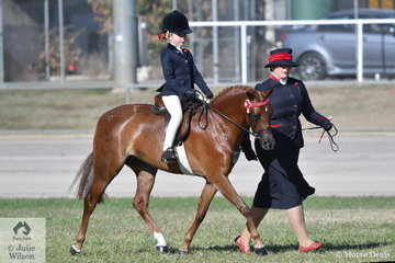 Casey Sidorenko's, 'Taylar Made Fairy Floss' took second place in the class for Leading Rein Show Pony on the final day of the 2019 ACTewAGL Royal Canberra Show.