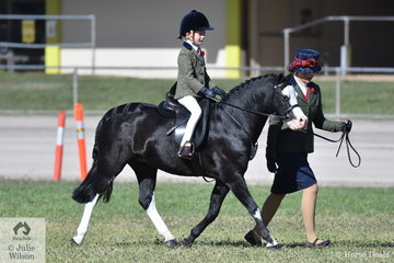 Vanessa Galloway-Smith's, 'Bamborough Snigger' took second place in the class for Leading Rein Show Hunter Pony.