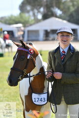 Tess Frecklington looks pleased to be competing on the vast Canberra arena. She is pictured with the Frecklington and Prada Pines Stud nomination, 'Prada Pines, Pochontas' that took second place in the class for Pinto Mare/Filly Under 14hh.