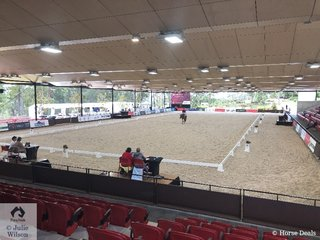 The Prix St Georges horses enjoyed the indoor arena today.