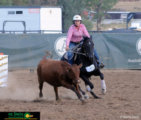 First out in the Ladies Campdraft at the Australian Stock Horse Nationals 2019 was Fiona Howell riding Forest Riptide.