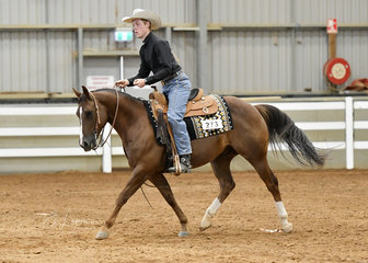 Christopher Holmes riding Satchmo's Mensa Cat in the All Age Youth Ranch Riding