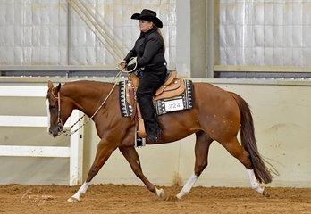 Ingenuity ridden by Jo Ann Wettenhall in Open Ranch Riding