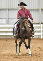 Kerry Cribb riding Mangahani Station in the All Age Amateur reining