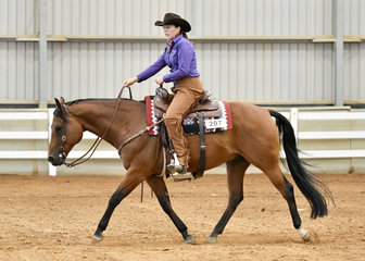 Zip Two Blazes ridden by Karen O'Keefe in the Open Ranch Riding