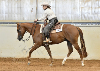 Shelly Biancon riding Shiney And Gay in the Open Ranch Riding