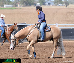 Carly Domrow and Wallarae Dee Bar Romeo warming up before the Novice Campdraft at the 2019 Australian Stock Horse National Show.