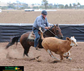 Allan Young on Greendale Liberty Selena scored a 90 Joint Leader Novice Campdraft.
