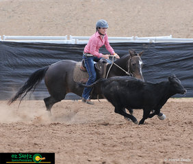Meagan Hopkins and Rebels Eclipse compete in the Novice Campdraft at the 2019 Australian Stock Horse Nationals..