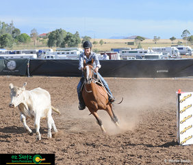 Crossing between the final pegs in the Ladies Campdraft was April Docherty and Tocal Giddy Up LH finishing with a score of 84.
