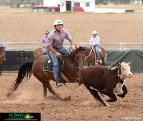 Having a run out in the Novice Campdraft on the first day of ASH Nationals was Troy Jenkins on Jenkins Judges Daughter.