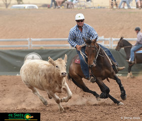 Eyes on the target - James Morse and Tallerack Decoy follow their beast around in the Novice Campdraft.