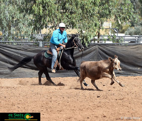 With a great partnership, Nicholas Clydesdale and Avalon Cowgirl managed a score of 87 in the Novice Campdraft.