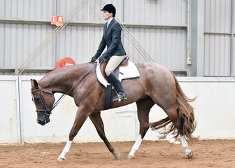 Gotta Love That , ridden by Carolyn Johnson in the Junior Horse Hunter Under Saddle Derby