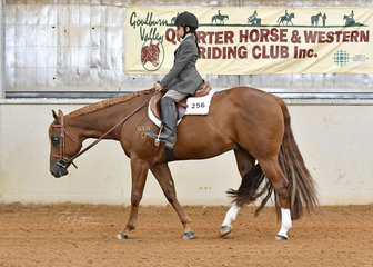 Tomi-Rose Elliot riding RRD Somethin To Shine in the Youth Walk Trot 5-10 Years Hunter Under Saddle