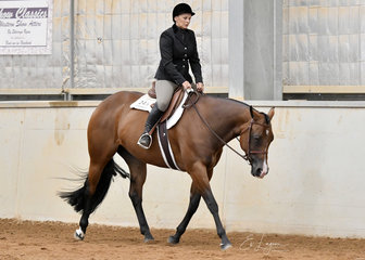 Liz Keating riding Lazy Lopin Daisy in the Novice Horse Hunter Under Saddle