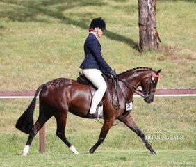 "Champion Preliminary Large Pony ""Seasons Park Diamonds"" and Penny Gibson."