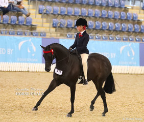 """Third placegetter in the Child's Large Pony of the Year event was """"Rosedale Darlington"""" ridden by Tia McKenzie."""