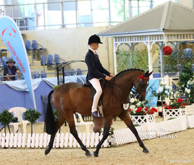 """Entering the arena for the Child's Large Galloway of the Year event is Tyler Kelly riding """"Chippenham Zulu""""."""
