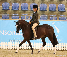 """""""Anjara Park Euphoria"""" was ridden by Mia Wright-Miller to win the Champion Child's Medium Hunter Pony of the Year title."""
