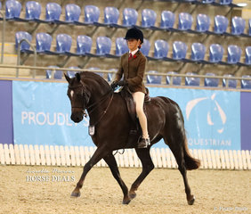 """Champion Child's Large Hunter Pony of the Year """"Owendale Rembrandt"""" ridden by Becky Roberson."""