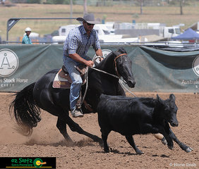 Having an impressive run in the Open Camdraft at the ASH National Show is Jay Charnock and Struan Parks Just Looking.