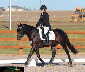 It was an impressive test for Lynette Richardson and Eurella Beersheba in the 4 year old and under Preliminary 1A at the Australian Stock Horse National Show held at AELEC in Tamworth, NSW.