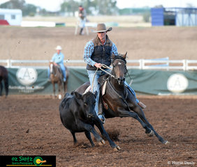 Not letting the beast out of his sight, Bevan Wood and Demand Finally Made compete in the Maiden Series Campdraft at the 2019 Australian Stock Horse National Show held in Tamworth, NSW.