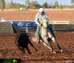 With a clear sense of teamwork between Mathew Holz and Paris Reims, they control the beast in the Maiden Series Campdraft on day three of the 2019 Australian Stock Horse National Show.