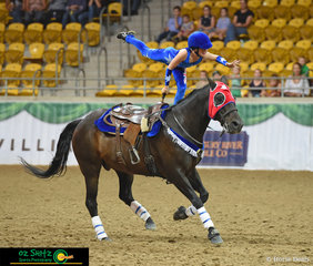 The Opening Ceremony of the 2019 Australian Stock Horse National Show had a variety of displays to entertain the crowd, including talented trick riders.