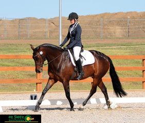 It was an impressive test for Jaci Norris and Glen Lee Rivoli Lynx in the Novice 2B at the Australian Stock Horse National Show in Tamworth, NSW.