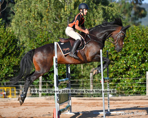 "Oliver Prowse rode ""Irish Shamrock"" in the B Grade Championship representing Midland Zone"