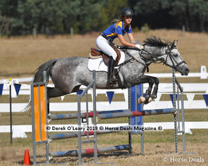 """Elouise Barton riding """"BP Valkyria"""" placed 10th in the C Grade Championships representing Northern Metro Zone"""