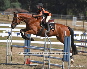 """Kian Blanchard rode """"Ace"""" placed 3rd in the C Grade 2 phase Championship representing Midland Zone"""