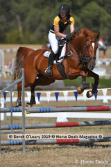 """Kimberley Carpenter rode """"Marquis Brandy Schnapps"""" in the C Grade Championships representing Northern Zone"""