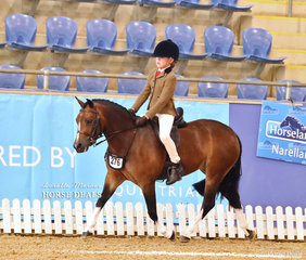 """""""Woranora Primrose"""" ridden by Brooke Doolan placed in the Top 10 Small Hunter Pony Championship event."""