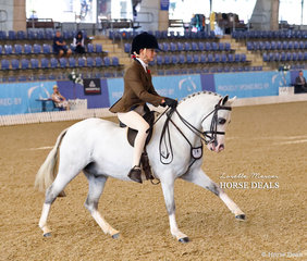 """Becky Roberson rode """"Arcadian Enforcer"""" to a Top 10 placing in the Small Hunter Pony Championship."""
