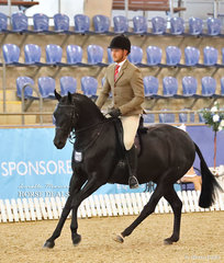 """""""Gentry Park Take Note"""" was ridden by Rhys Stones to place 3rd in the Small Hunter Galloway event."""