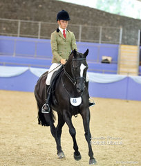 """Kaitlin Bryce's """"Buckwell Park Joop"""" was ridden by Tyler Kelly to a Top 10 placing in the Small Hunter Hack of the Year Championship."""