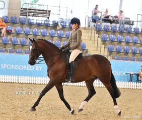 """Emma Adams riding """"Illark Donnerge"""" to a Top 10 placing in the Small Hunter Hack of the Year event."""