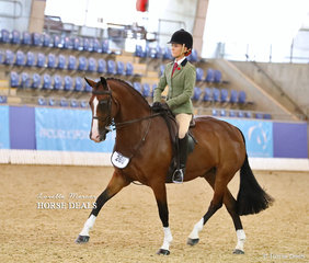 """""""Westlake Marksman"""" ridden by Kasey Currall to a Top 10 placing in the Small hunter Hack of the Year event."""
