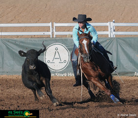 Tight turns and high speeds gave Erin Amos a combined score of 177 in todays Stallion Campdraft Final riding the stunning chestnut stallion Yoorana Copper Acres.