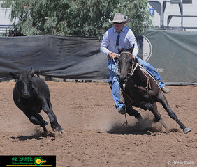 Keeping in sync with the beast is Bullseye Banjo with rider Wyatt Young in the campdrafting phase of the ABBEY Open Challenge..