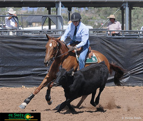 Working as a team, Jill Brown and Jats Bar Impact on Sunday, day four of the Australia Stock Horse National Show held at AELEC in Tamworth, NSW.