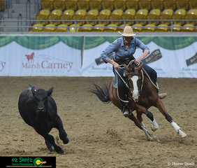 We saw everything at the Gala Night on Saturday from Liberty performances to high speed trick riding and it wouldn't be an ASH show without the Teams Campdrafting, where the womens team dominated!