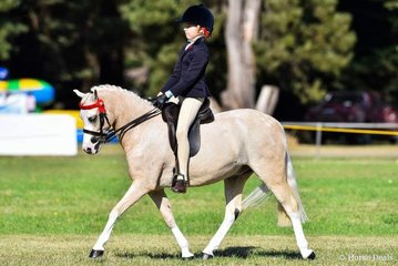 Picturesque Prince and Erin Bowers claiming the reserve small pony award.