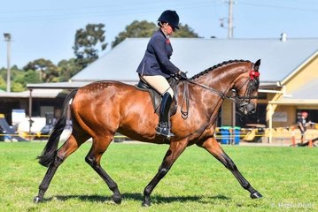 Fiona McIntyre riding the bart Cummings trained superstar Precedence