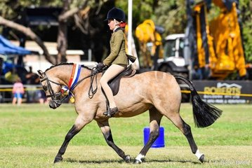 Stella Horspole and her Brandyhollow Candyman were another super successful combination. Here they are shown winning champion hunter pony