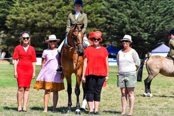 Supreme ridden show hunter Unanimous and judges.